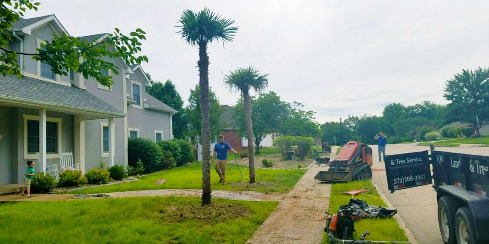 Our Landscape & Tree Services