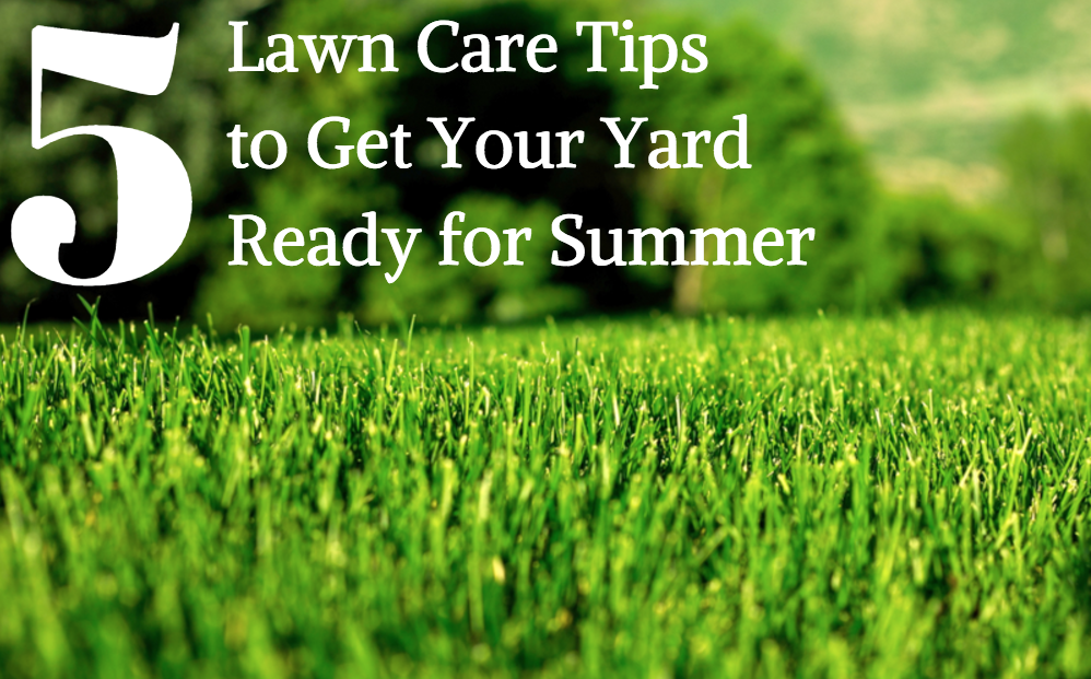 early spring lawn care tips - 998×621