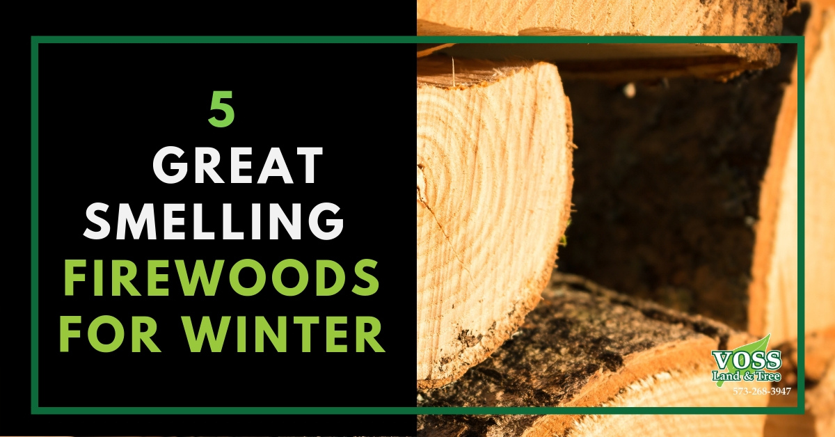Great Smelling Firewood