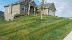 Routine Lawn Mowing Services